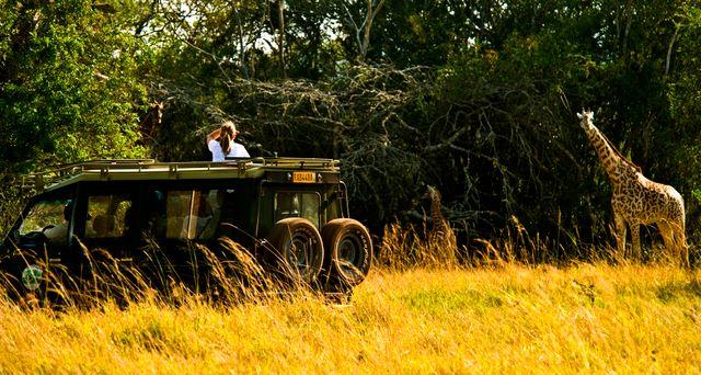 akagera safari companies